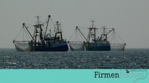 Bild mit Firmenfischen Logo und 2 Kutternkutter